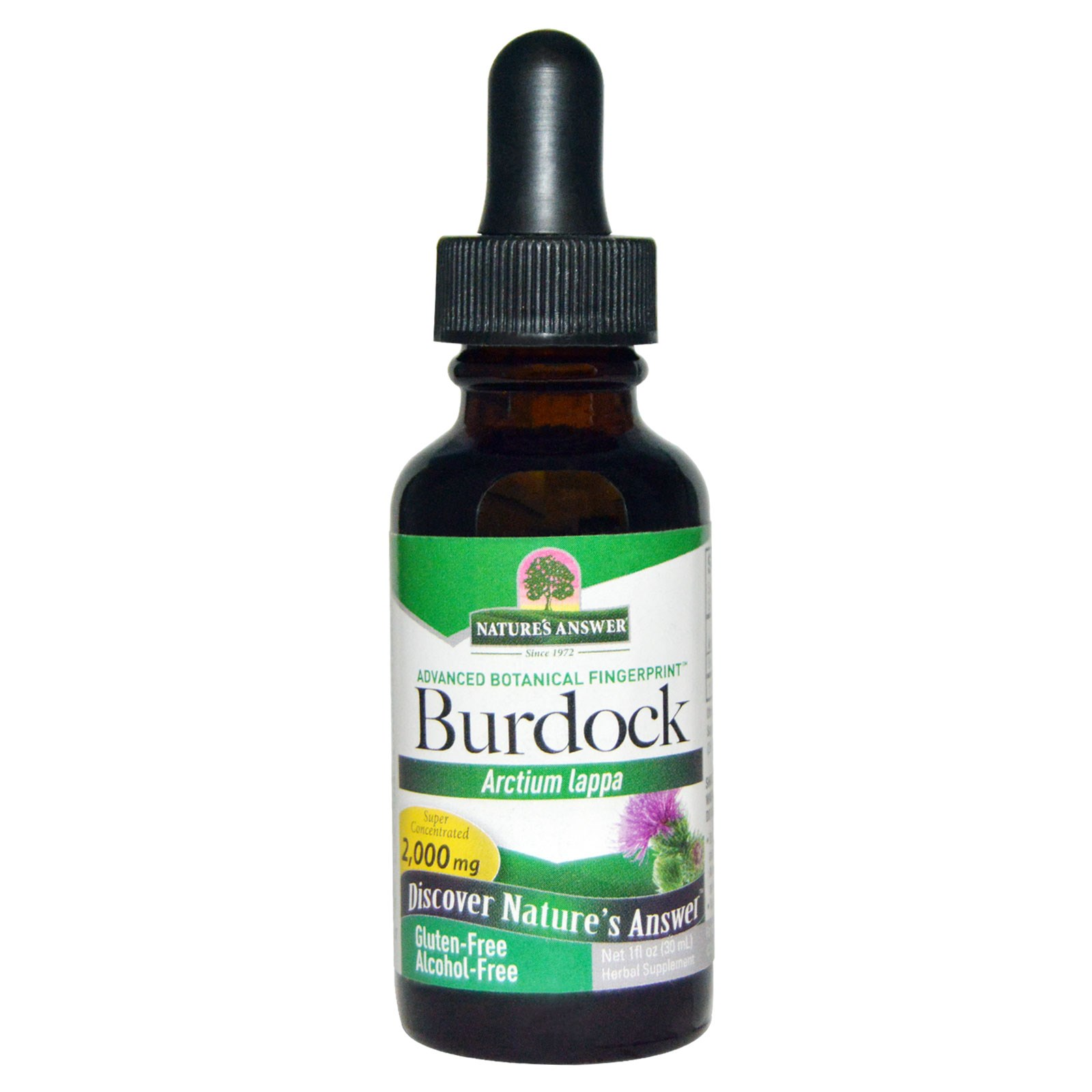 Burdock, Alcohol Free, 2000 mg (30 ml) Nature apos s Answer Natures Answer