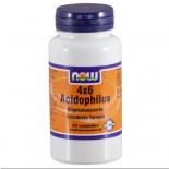 Now Foods, 4 x 6 Acidophilus, 60 Capsules
